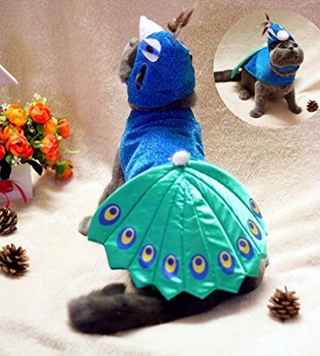 Kailian reg; Pet Puppry Hund Katze Cosplay Peacock Costume Einstellbare Hat & Cape