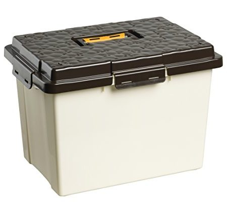 Rotho Carry Box, beige