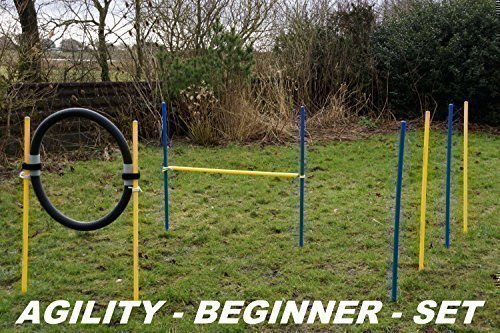AGILITY-BEGINNER-SET BLAU / GELB