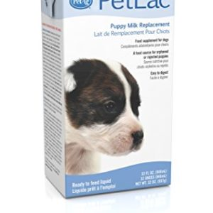 PetAg PetLac Milk Replacer Liquid for Puppies 32 oz