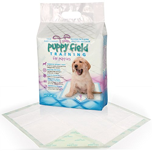 Tommi Puppy Field Training Pads
